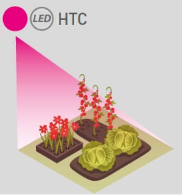 teinte de lumière HTC