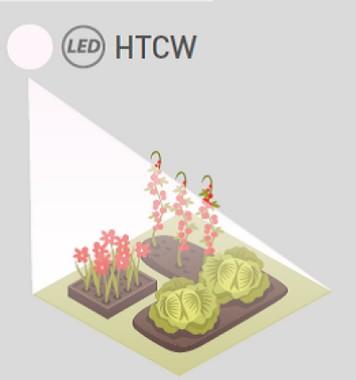 Teinte de lumière HTCW, plein spectre
