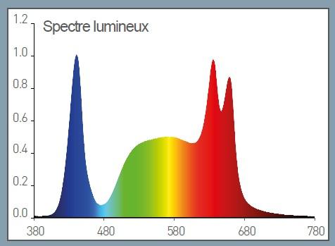 Rayonnement de la led HTCW plein spectre